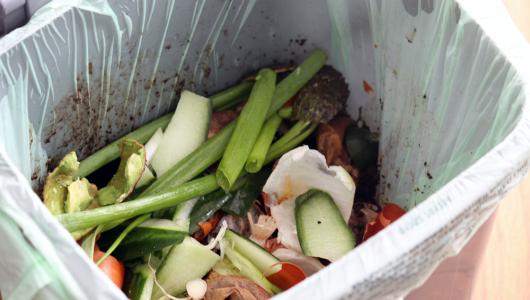 Green food waste disposal in bin liner