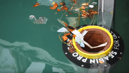seabin being used for the plastic prevention project