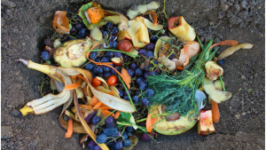 Various food waste piled on the soil