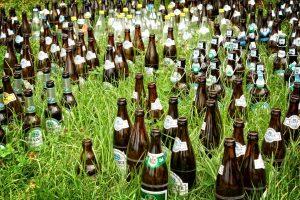 Bottles in a grassy field
