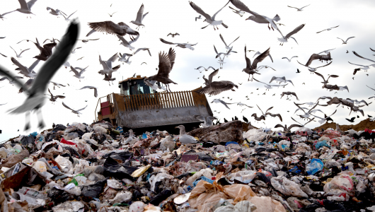 waste in landfill
