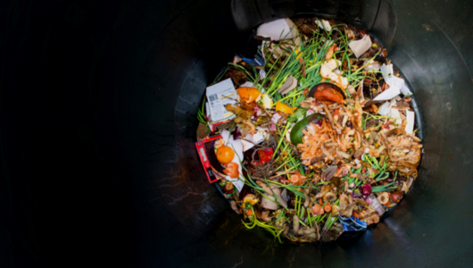 Food waste the complete 2020 guide